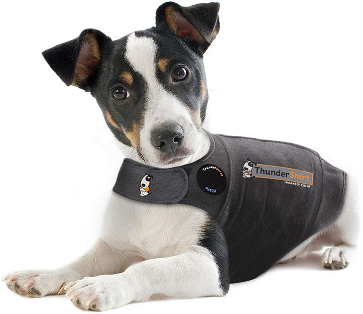 Pet shelters eligible for free ThunderShirts