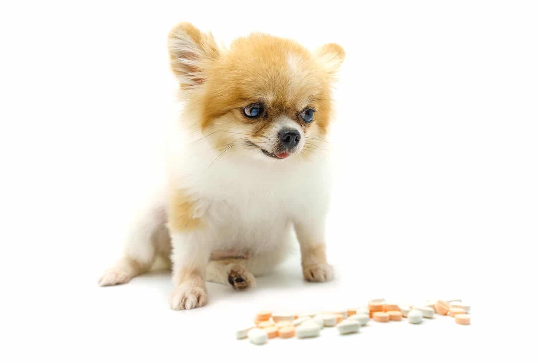 Veterinarians sell 62% of pet drugs