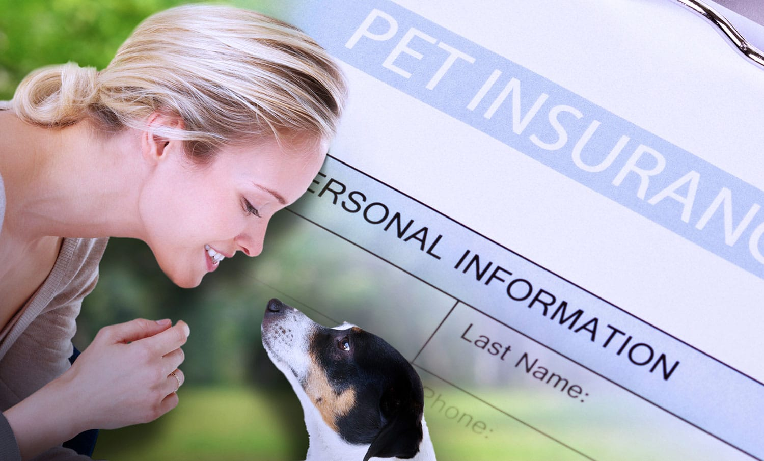Pet insurance and the new veterinary client