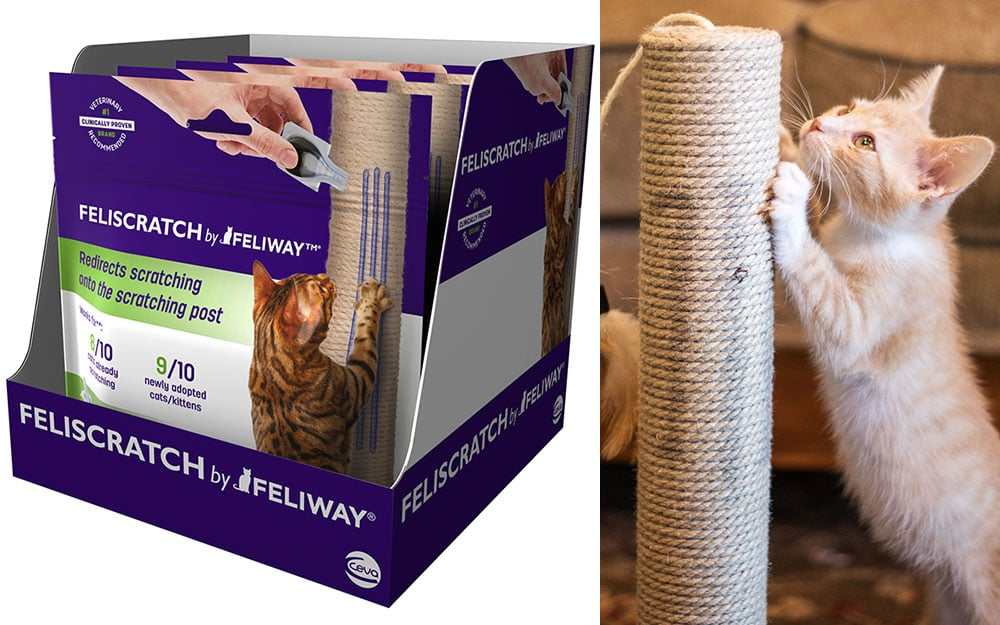 Ceva offers solution for errant cat scratching