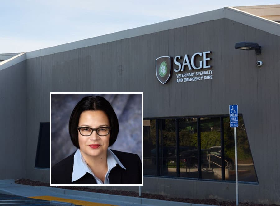 California's SAGE Centers hires COO