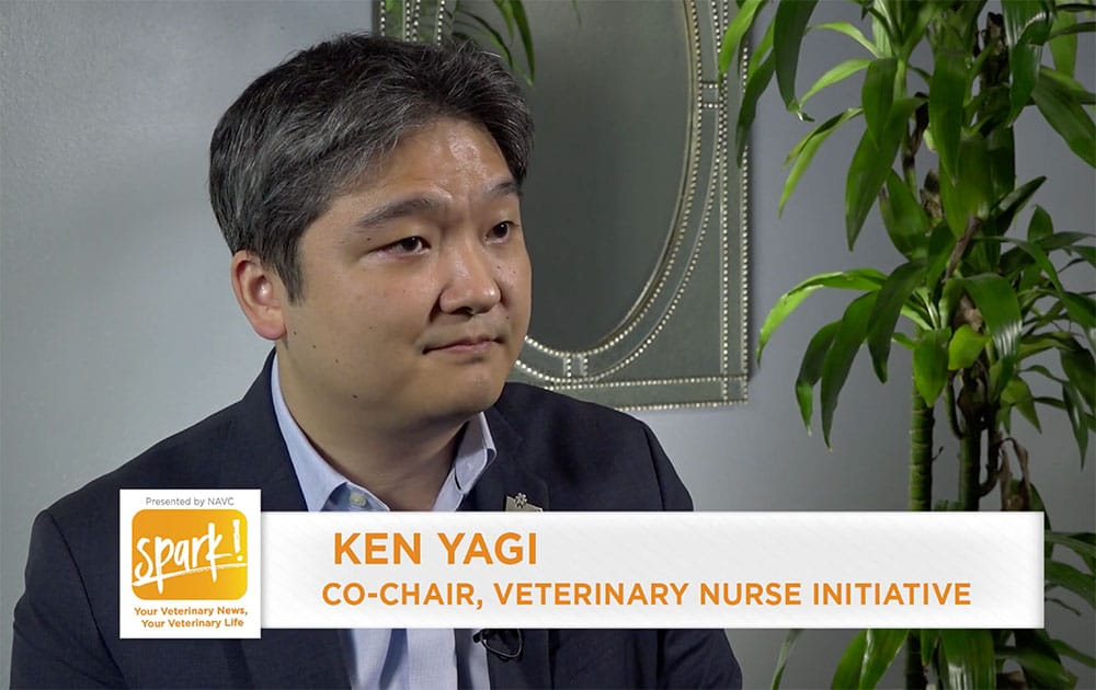Video: What the Veterinary Nurse Initiative would do