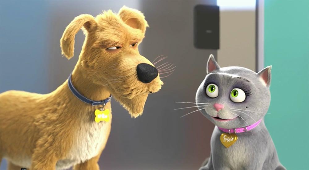Merck launches diabetes website for pet owners