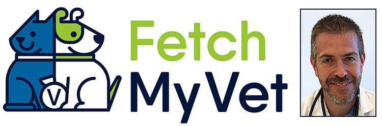 New mobile practice: Fetch My Vet
