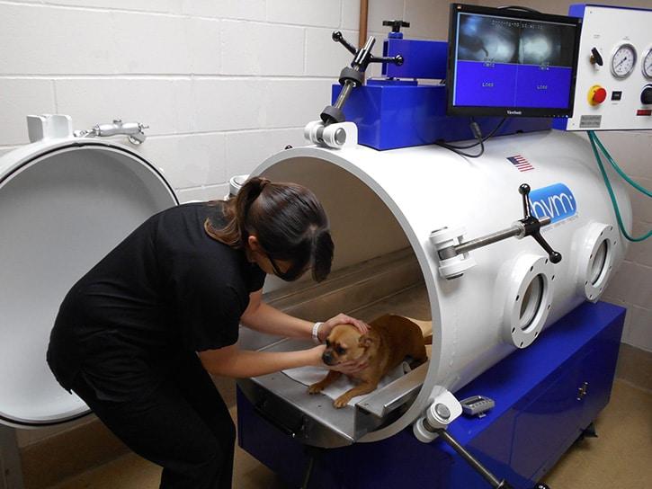 More hospitals utilize HVM hyperbaric chamber