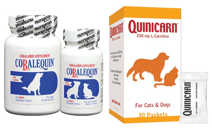 Nutramax updates Cobalequin, launches Quinicarn