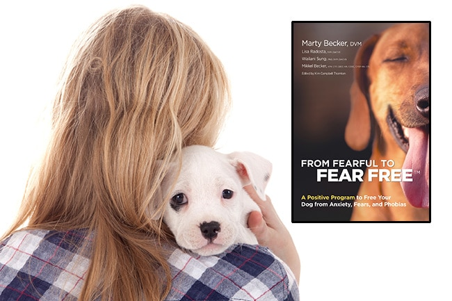 Fear Free team publishes guide for dog owners