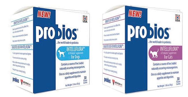 Vet's Plus puts probiotic to the test