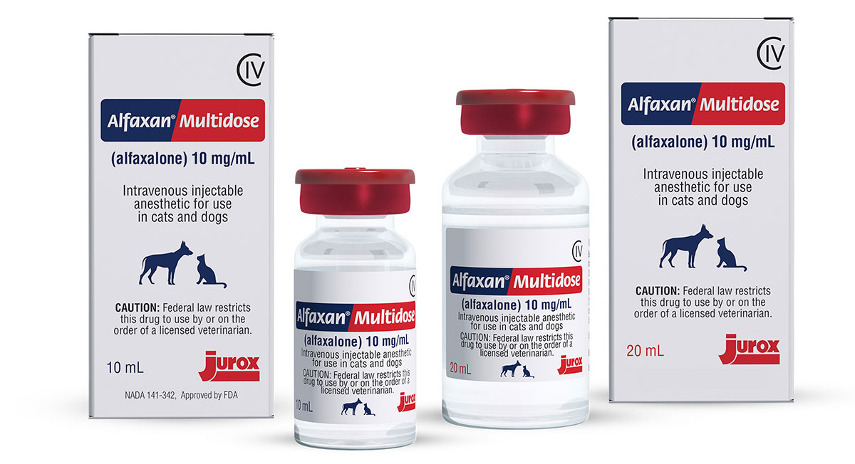 Jurox schedules August release of Alfaxan Multidose