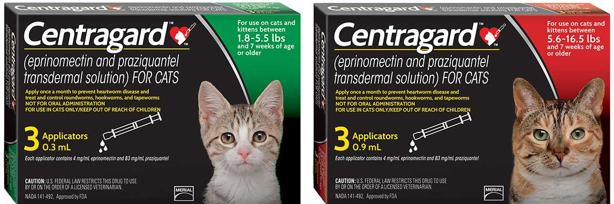 Boehringer unveils new feline heartworm preventive