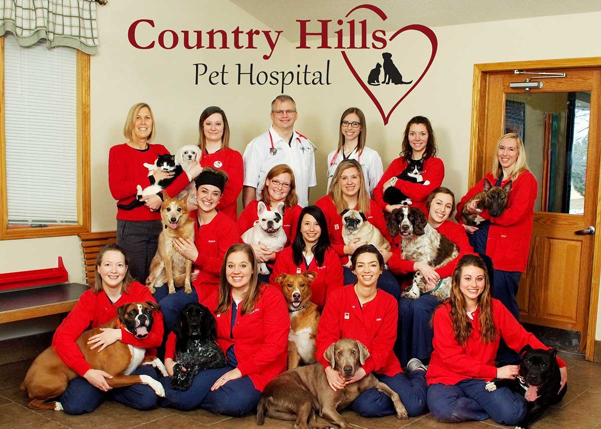 Wisconsin clinic wins AAHA Practice of the Year award