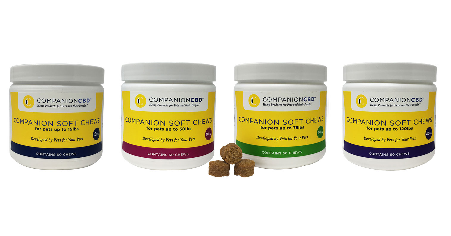 Veterinarian launches cannabidiol soft chews for pets