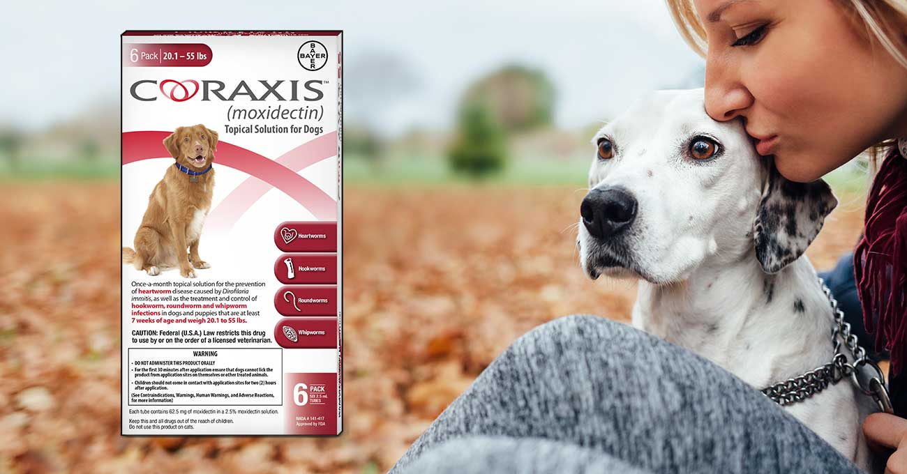 Bayer launches Coraxis topical heartworm preventive