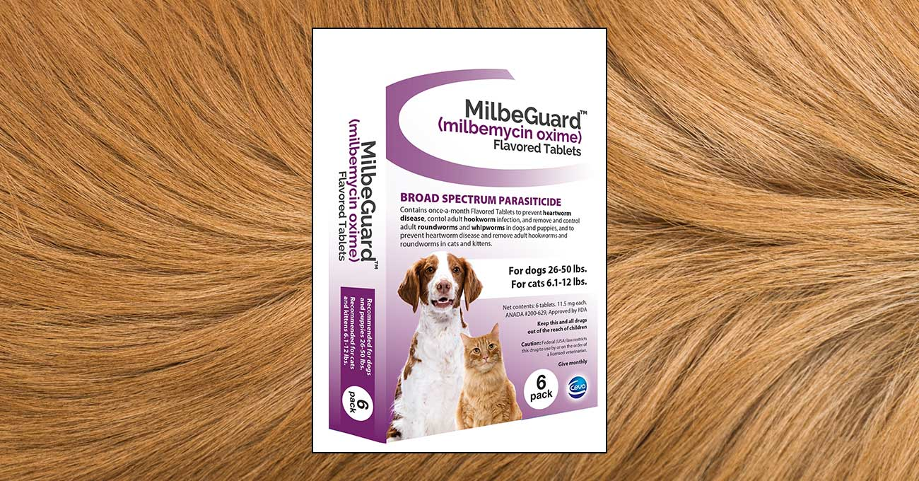 Ceva launches heartworm preventive MilbeGuard