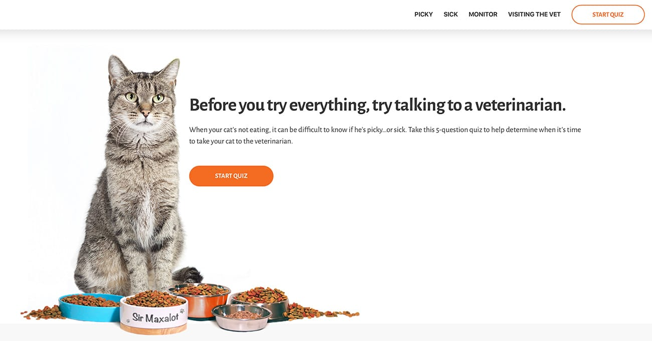A Website For Worried Cat Owners