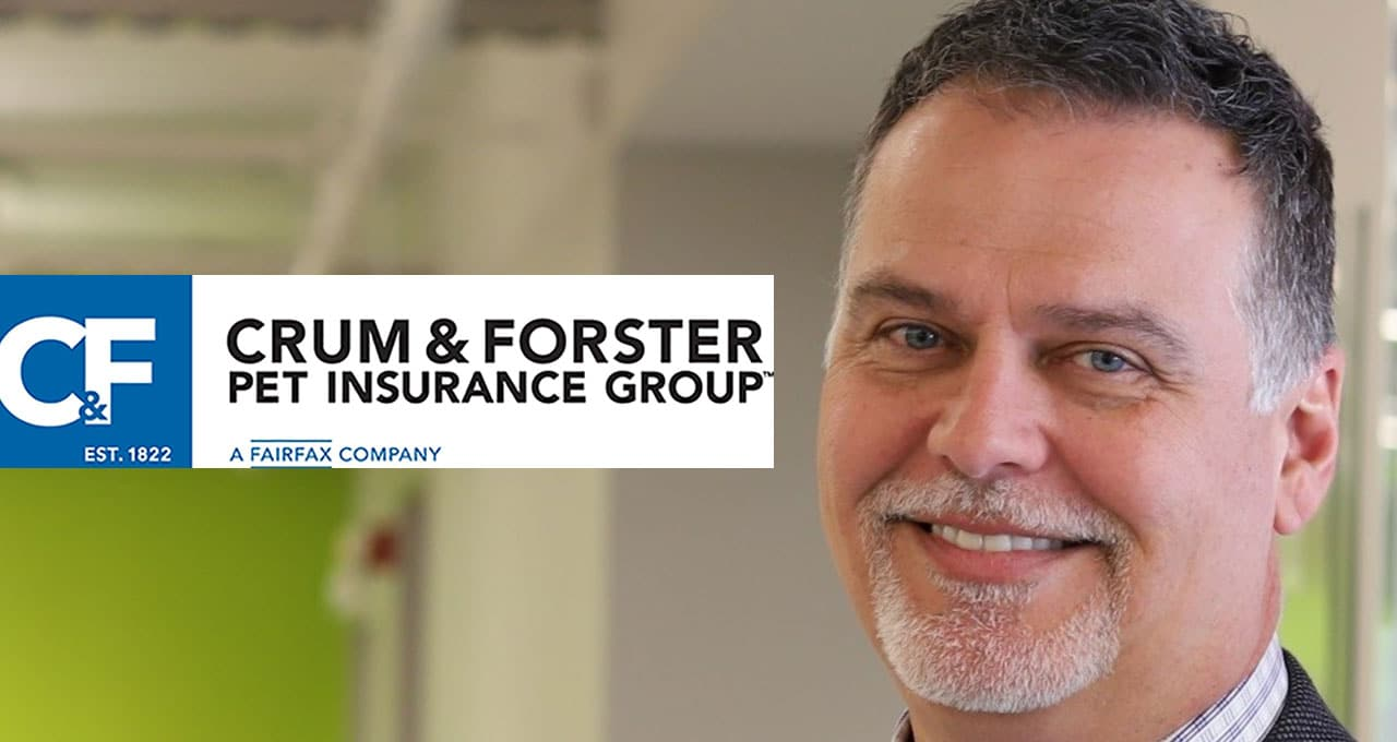 Insurance veteran takes over at Crum & Forster