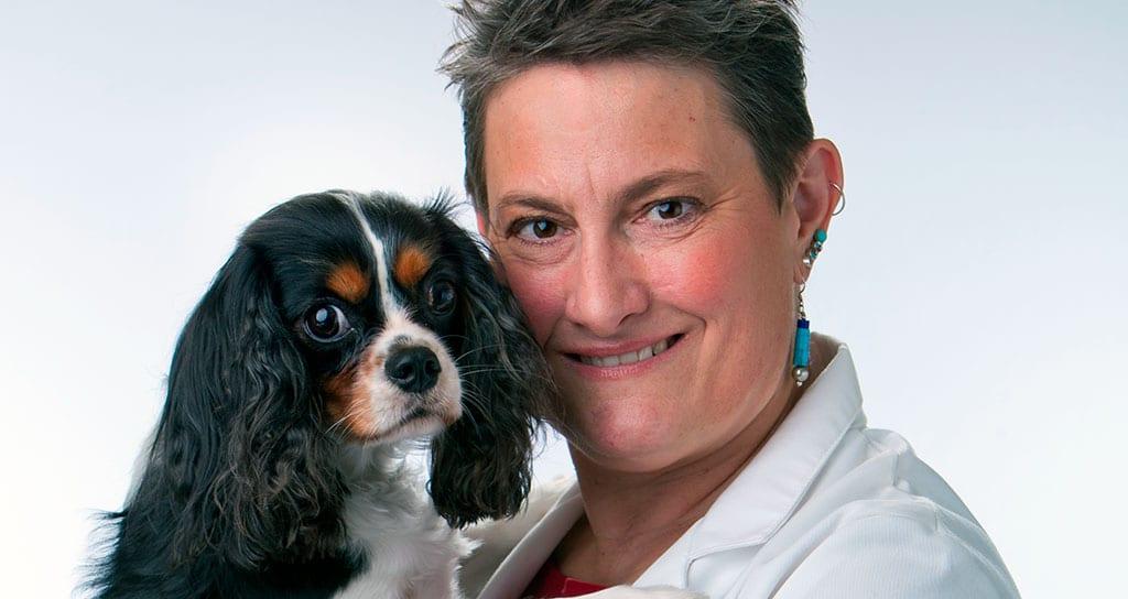 AVMA honors 2 veterinarians and professor