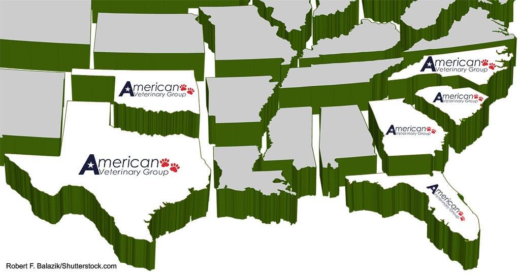 American Veterinary Group