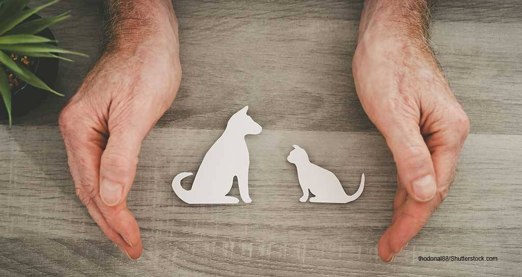 MetLife Pet Insurance